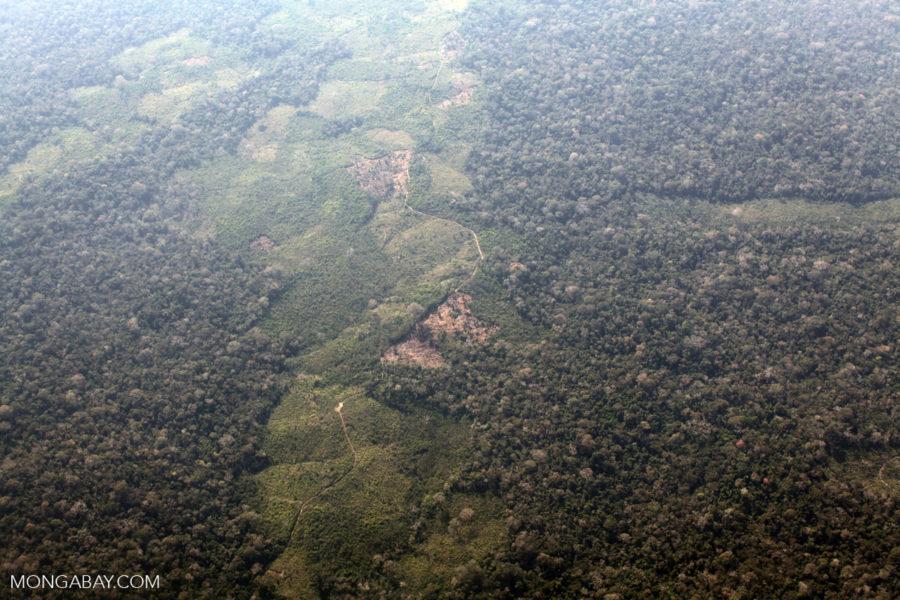Deforestation along the Peru, Brazil border. Photo by Rhett Butler for Mongabay News.