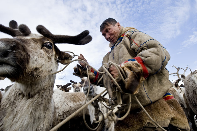 A Nenets herder. Photo: The Huffington Post
