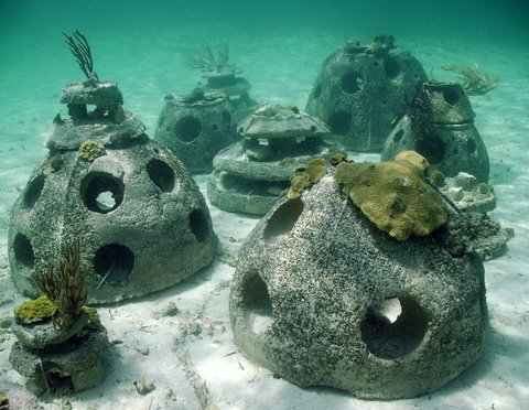 """I also saw these unique """"reef ball"""" structures while snorkeling. They were filled with fish and corals. Photo: Reef Ball Foundation"""