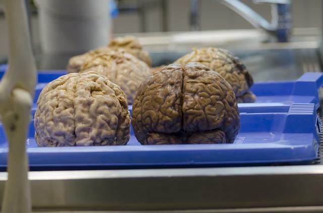 NatGeo televised a live brain operation