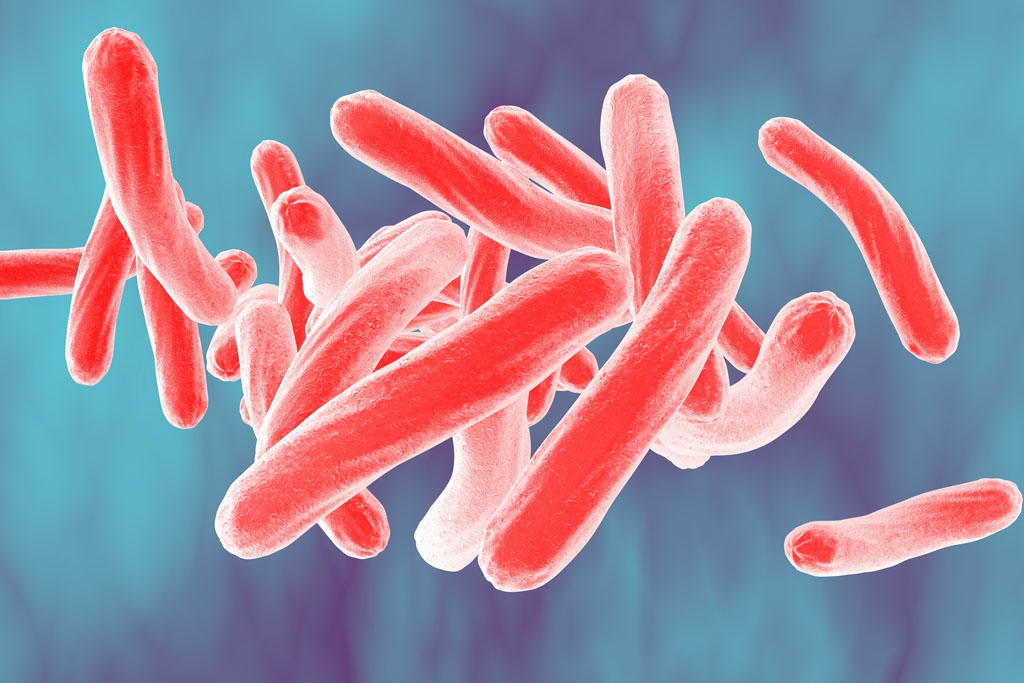 New drugs to treat tuberculosis?