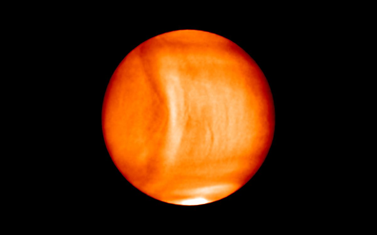 Bulging gravity wave seen on Venus