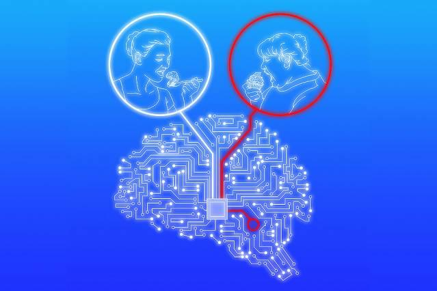 Cell interaction holds keys to brain function and cognition.