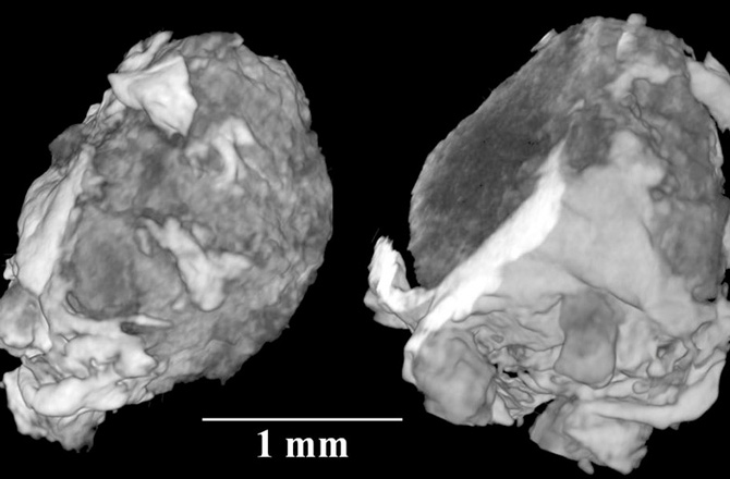 X Ray tomography of the crystal found inside a 15,000 year old meteorite